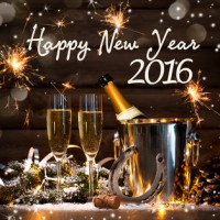 Szczęśliwego Nowego Roku 2016!